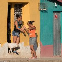 """""""COULEUR CUBA"""" - Jaune 4"""