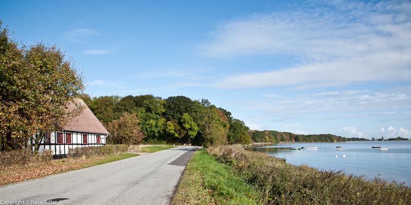 Road along the Sea