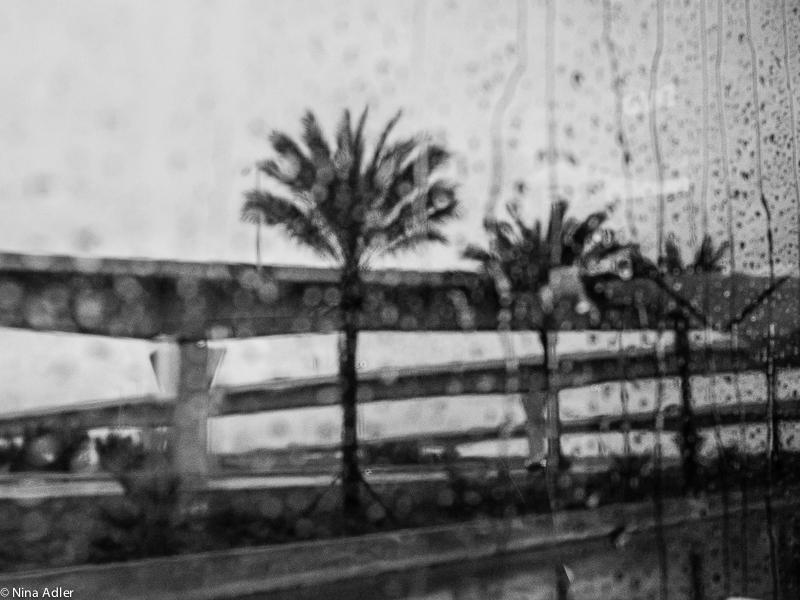 Rainy day in Miami