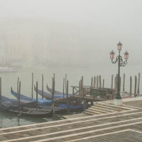 Morning mist / Brouillard