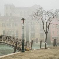 The morning mist / Le brouillard 1