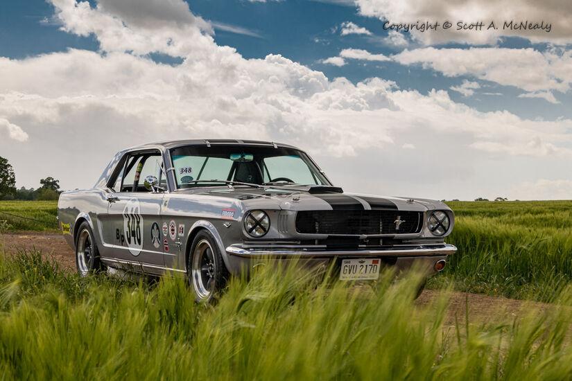 1966 Mustang 302-9585