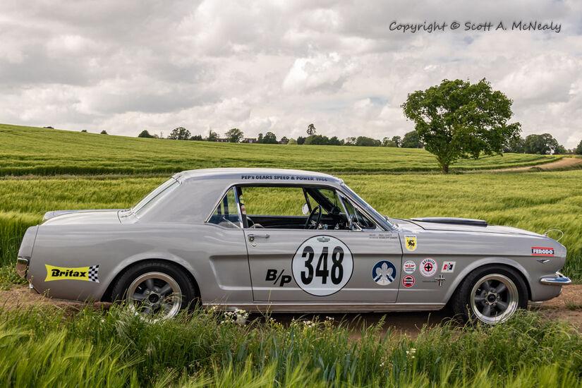 1966 Mustang 302 passenger side