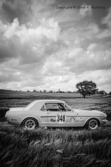 1966 Mustang 302 passenger side-BW
