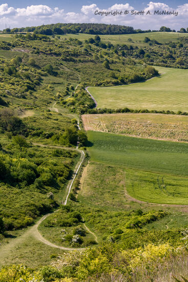 Dunstable Downs-footpath from above-9362
