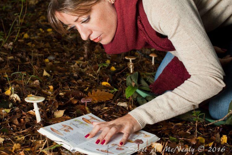 Jennie looking at 5 species of fungi at Burnham Beeches