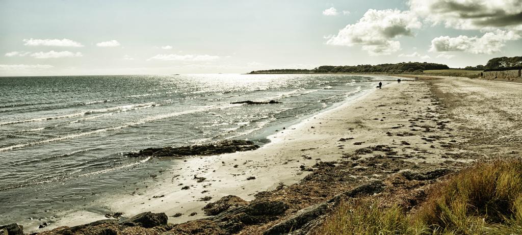 Ballywalter Beach 5