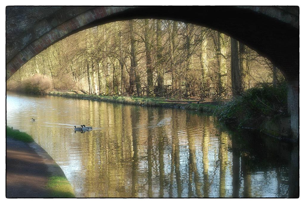 Bridgewater Canal 1