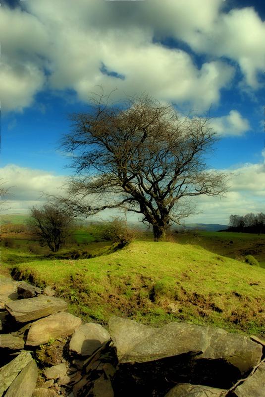 Lake District View 2