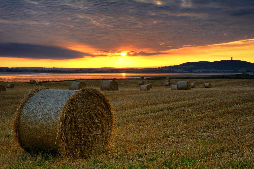 Scrabo Hay Bales Sunset 2