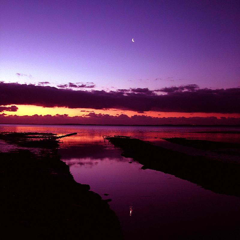 Strangford Sunrise 4