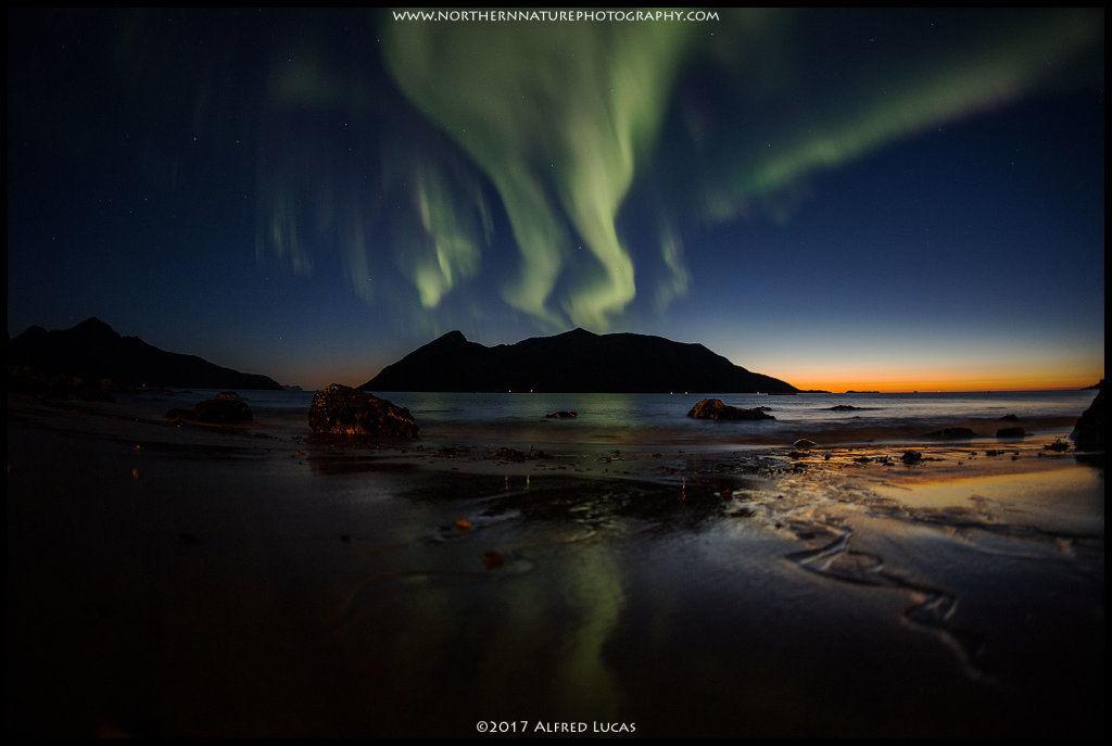 Aurora #9