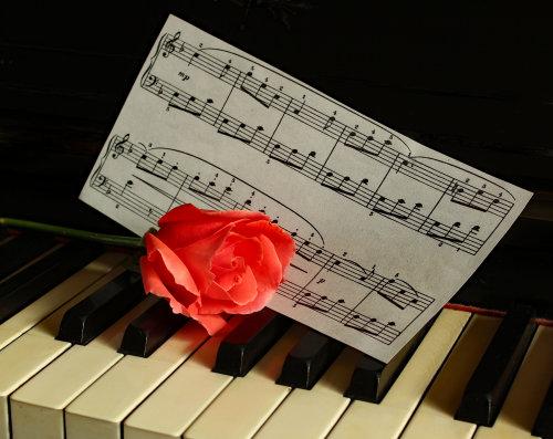 Piano & Rose.  Photographer: Lorna O'Keefe