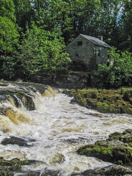 Cenarth Water Mill