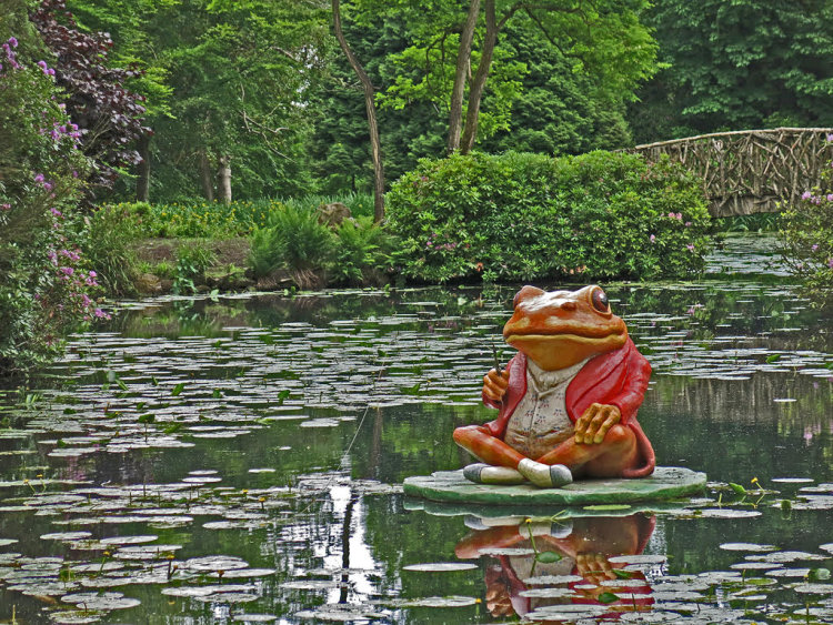 Toad Of Tatton Hall