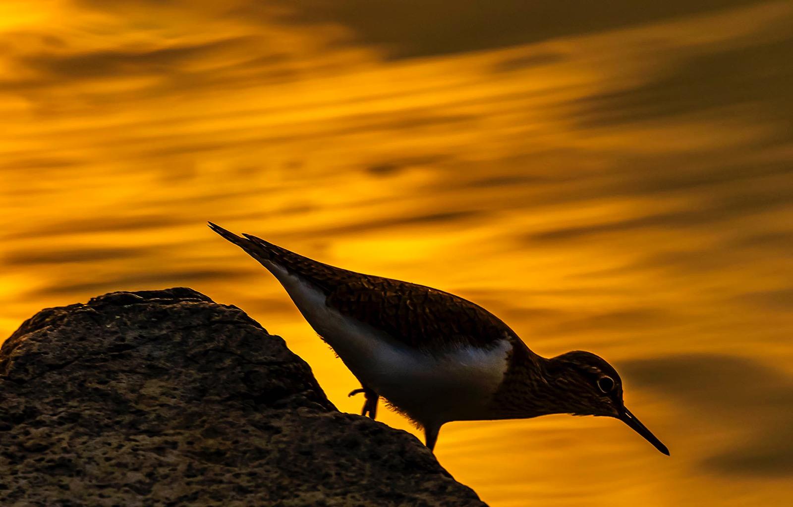 Sunset Vaya lake Burgas Bulgaria captured on Nikon Sigma Len