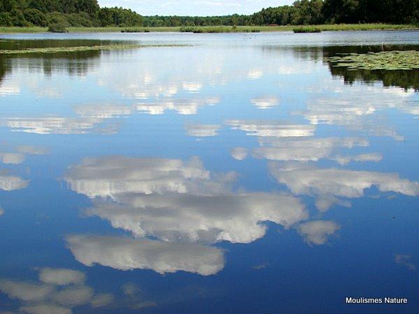 Brenne, 'thousand lakes'