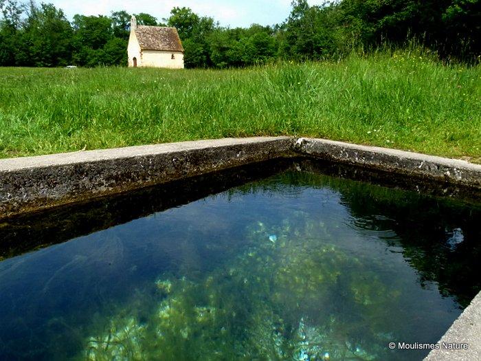 Freshwater spring, Brenne
