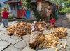 Namaste Nepalese Village