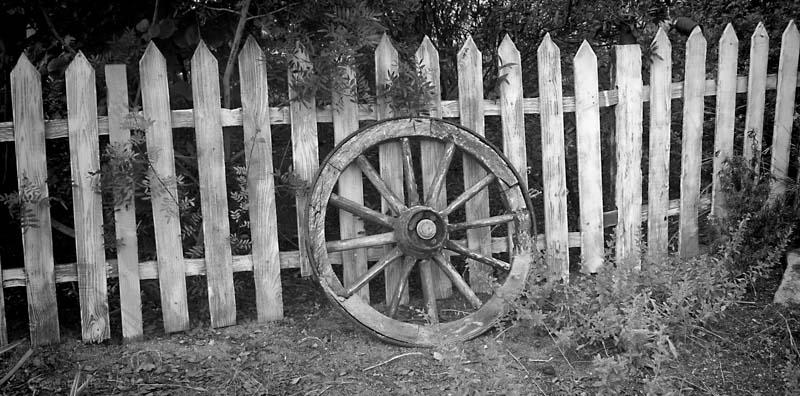 wheel & fence