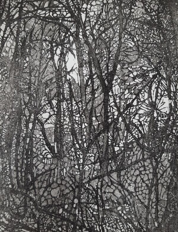 Black and  white image of winter woods
