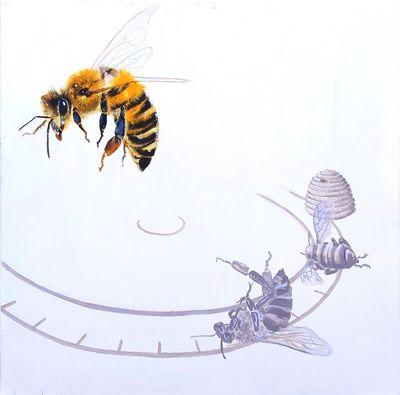 insekt die-off - bee