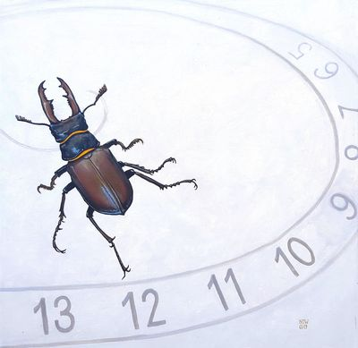 insect die-off - stag beetle