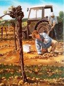 In the vinyards 1