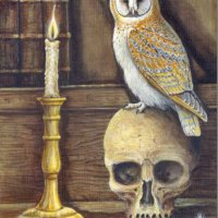 The alchemists owl