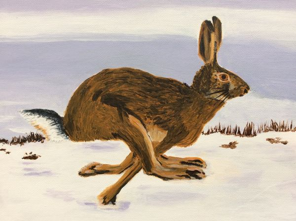 MARCH 2020 - Hare in the Cottesmore Snow, acrylic by Margaret Conner