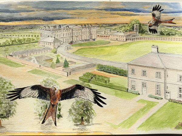 SEPTEMBER 2020 - Red Kites over Burley on the Hill, watercolour by Bruce Allison