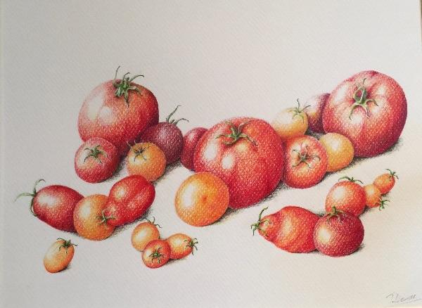Tomato Allsorts