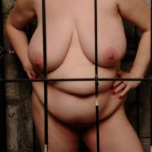 BBW Willow - Caged for love