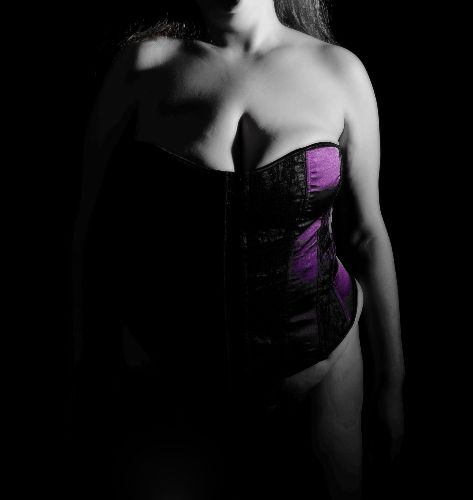 BBW Willow - Light and Dark purple corset