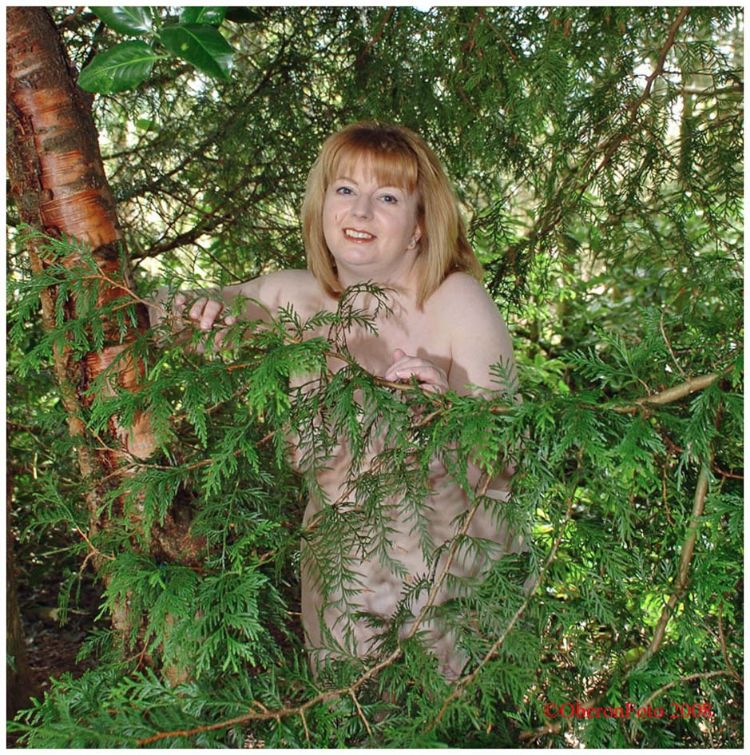 Charley - In the woods