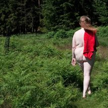 BBW Willow - Walk in the woods