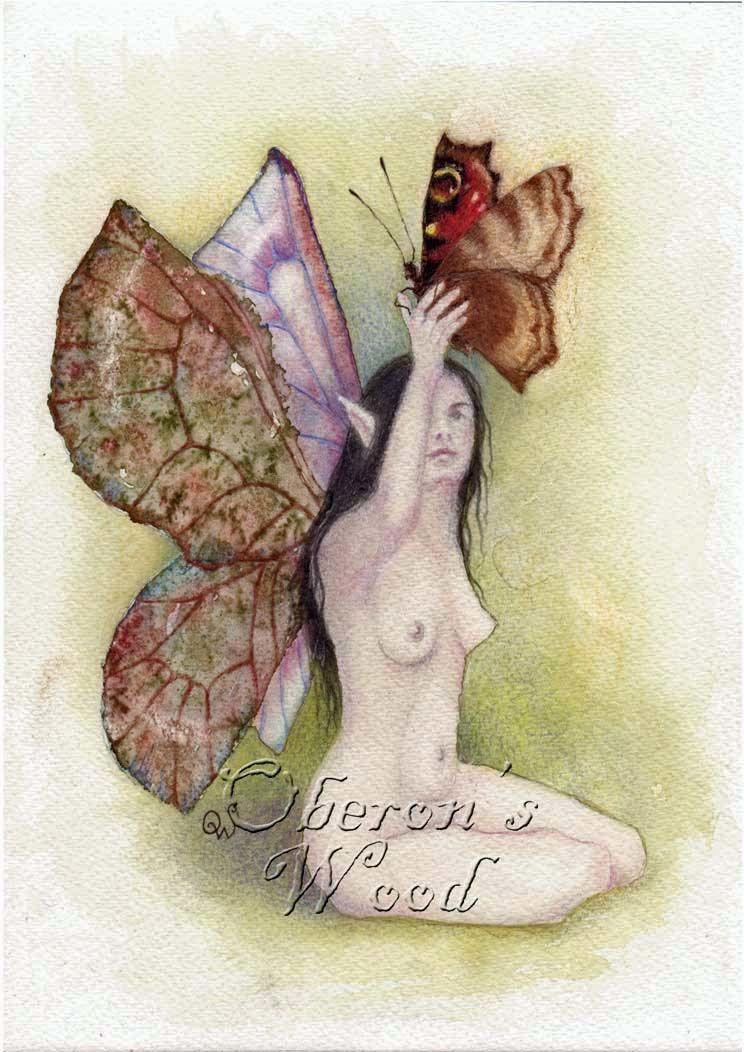 'Butterfly Guardian'