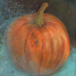 'Pumpkin with Blue Chiffon'