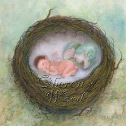' Faerie Baby Nest'