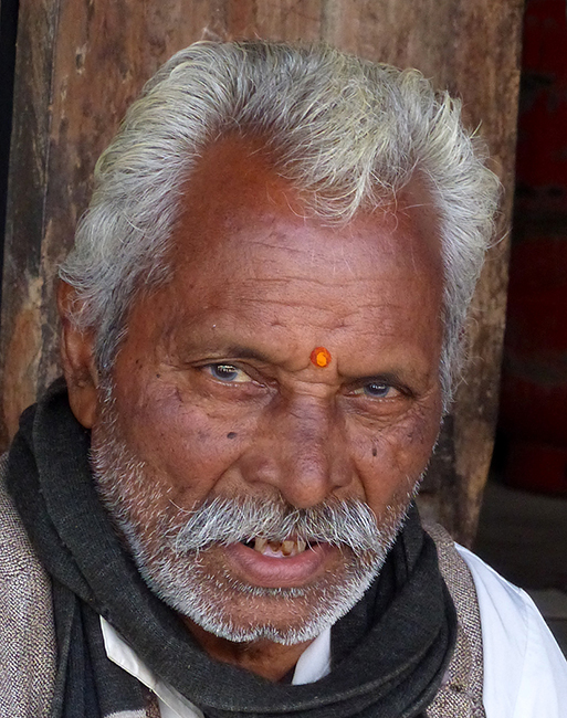 Man in Ranthambore