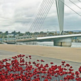 Poppies and bridge, Salford