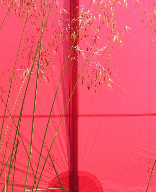 Photo for colour