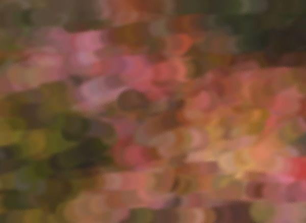 Abstract photo of autumn light
