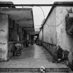 Casablanca - 2013