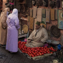Tomato seller in Marrakech