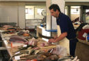 Fishmonger in the Market