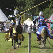 Loxwood Joust 2017-120 edited-1
