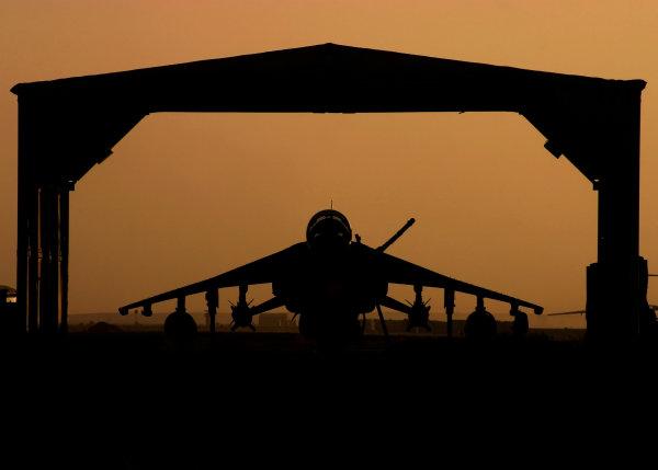 Harrier - dawn warrior