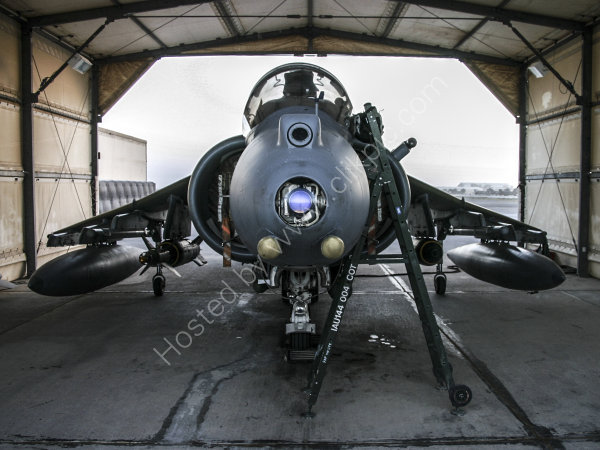 Harrier ZD327 - landed and ready