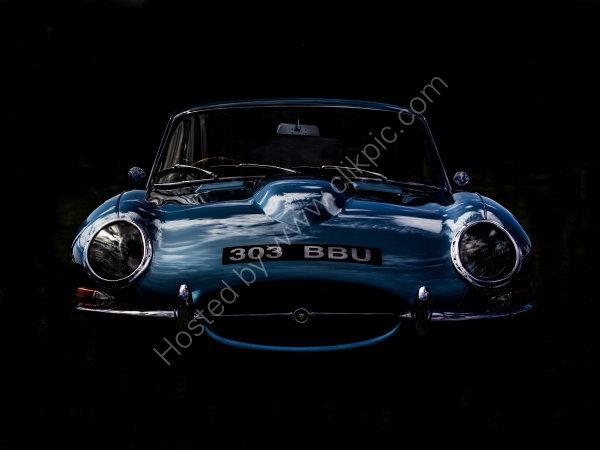 Blue Jaguar.